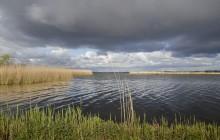 Gooimeer